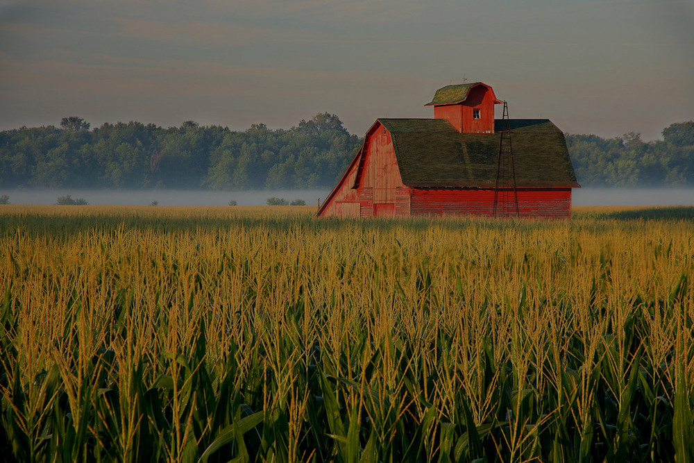 farm and crop insurance Stonington IL